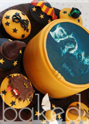Harry Potter Cake and Cupcakes